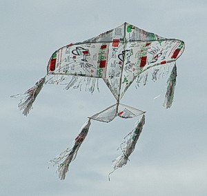 This is a homemade kite, made from reused plastic bags. It advocates the principal ;
